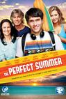 The Perfect Summer (2013)