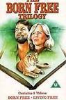 Volání divočiny: Nové dobrodružství (1996)