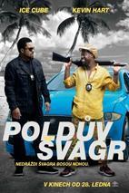 Plakát k filmu: Poldův švagr