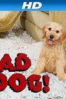 Bad Dog! (2010)