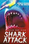 Žralok útočí (1999)