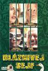 Bláznivej sejf (2003)
