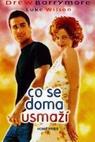 Co se doma usmaží (1998)