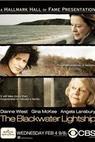 Hořké vzpomínky (2004)