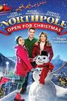 Northpole: Open for Christmas (2015)