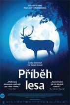 Plakát k filmu: Příběh lesa