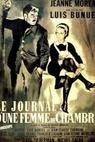 Deník komorné (1964)