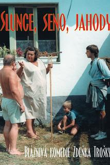 Plakát k filmu: Slunce, seno, jahody