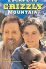 Návrat na Medvědí horu (2000)