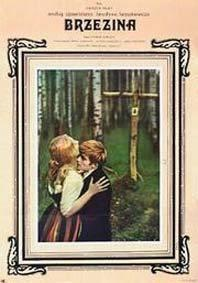 Plakát k filmu: Březový háj