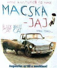 Plakát k filmu: Černá kočka, bílý kocour