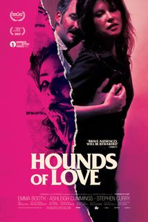 Hounds of Love