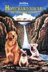 Neuvěřitelná cesta (1993)