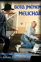 Plakát k filmu: Bota jménem Melichar