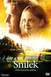 Plakát k filmu: Snílek