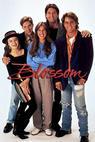 Kvítko (1991)