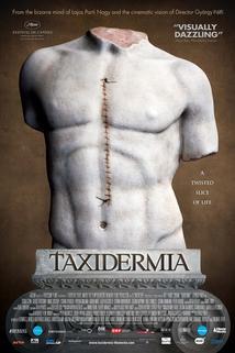 Plakát k filmu: Taxidermia