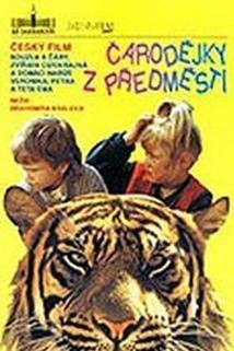 Plakát k filmu: Čarodějky z předměstí