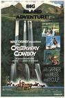 The Castaway Cowboy (1974)