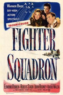 Fighter Squadron