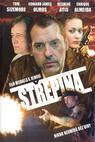 Střepina (2006)