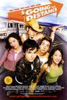 Divoká jízda (2004)