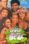Za pět minut dvanáct: Hawajský styl (1992)