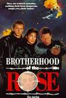 Brotherhood of the Rose (1989)