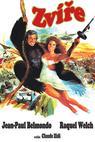 Zvíře (1977)