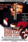 Darkness Before Dawn (1993)