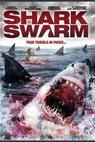 Invaze žraloků (2008)