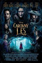 Plakát k premiéře: Čarovný les