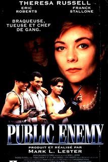 Veřejní nepřátelé - Public Enemies