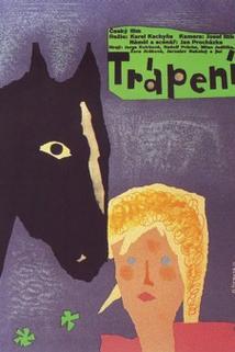 Plakát k filmu: Trápení