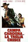 Napadení (1973)