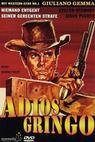 Adiós gringo (1965)