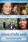 Obrázky Hollis Woodsové (2007)