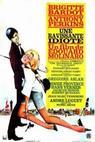 Nádherný idiot (1964)