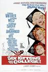 Sex Kittens Go to College (1960)