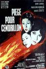 Past na Popelku  (1965)