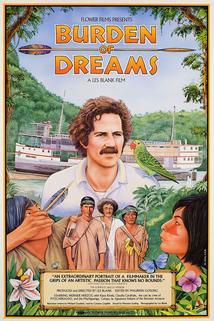 Plakát k filmu: Břímě snů