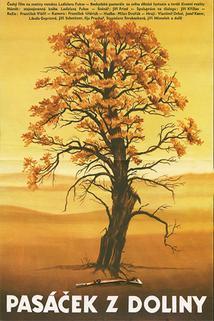 Plakát k filmu: Pasáček z doliny