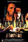 Noční past (1993)