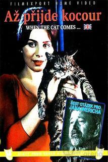 Plakát k filmu: Až přijde kocour