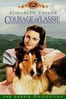Odvážná Lassie (1946)