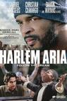 Harlem Aria (1999)