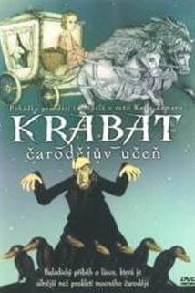 Plakát k filmu: Čarodějův učeň