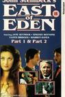 Na východ od ráje (1981)
