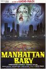 Dítě z Manhattanu: Ďábel přichází (1982)
