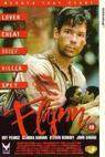 Flynn (1997)